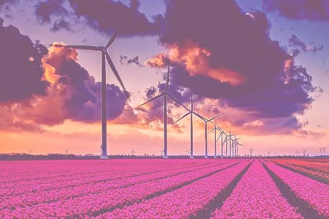Imagenes de energia eolica 6