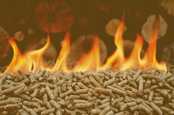 Imagenes-de-la-biomasa-6 TODO sobre la Energia de Biomasa